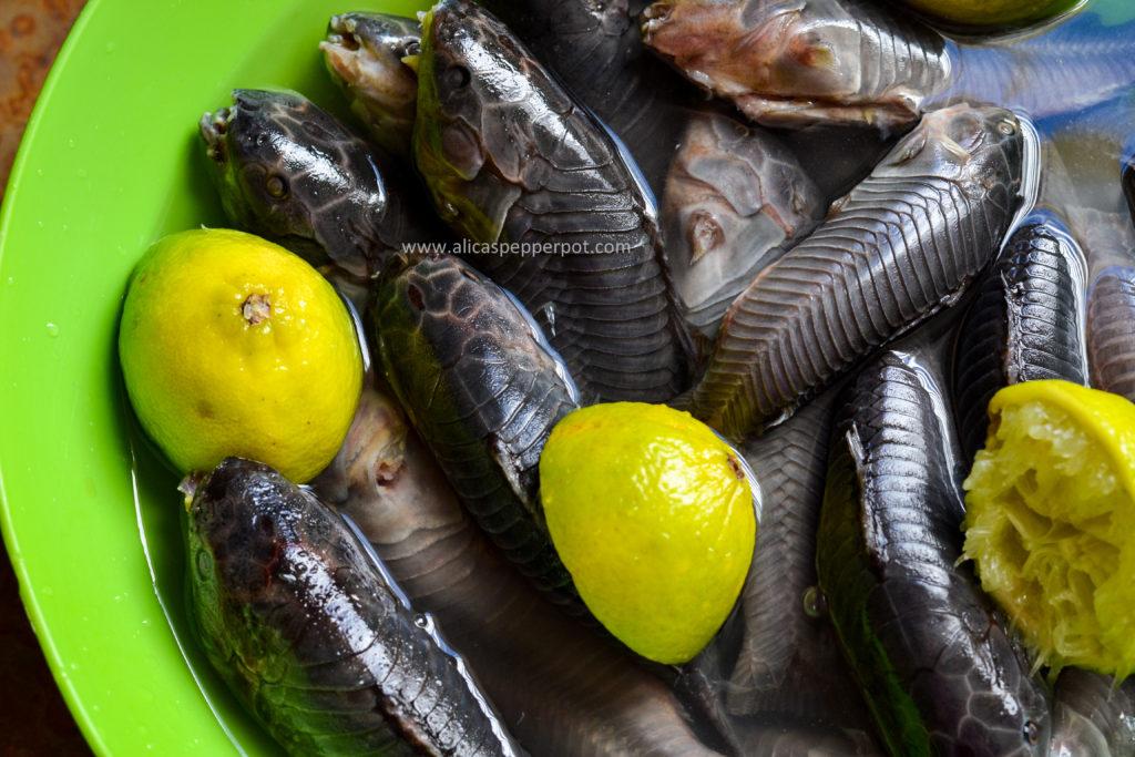 Hassar (armor catfish) curry - Alica's Pepperpot